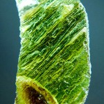Moldavite with natural notch filled by native clay