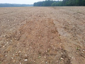A bare field after rain, sediments are well visible