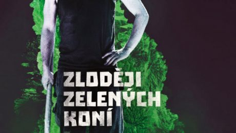 Poster - movie Zloději zelených koní