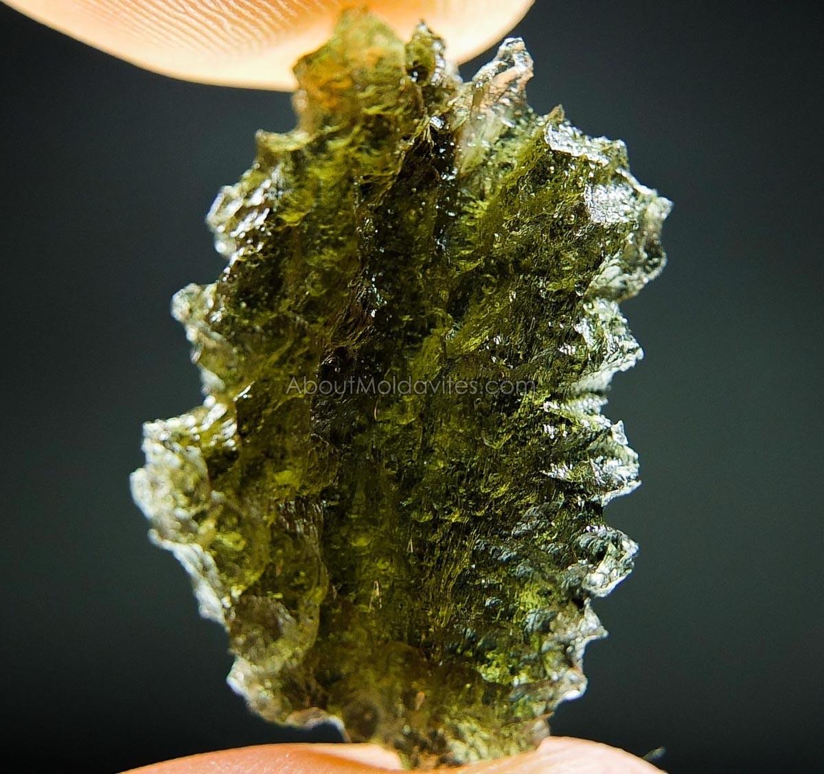 Moldavite - like hedgehog - from Nesmen