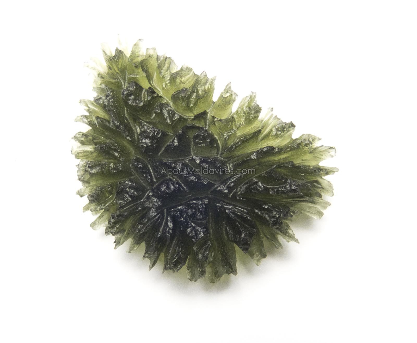 Angel chime Moldavite from Besednice
